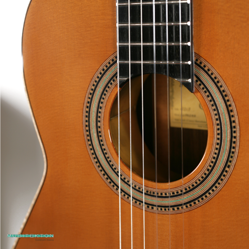 Guitarra F. Caldera La Suprema
