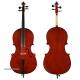 Violoncel Kreutzer School