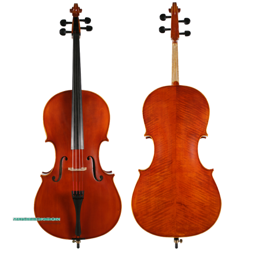 Violoncel Müller Virtuoso