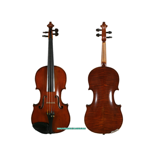 Violin Carolus Columbus Bruno