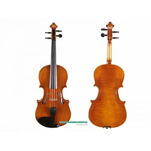 Violin TY Laurea