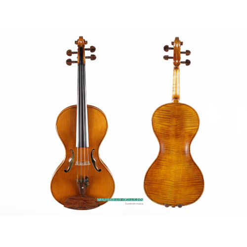 Violin TY Guitar