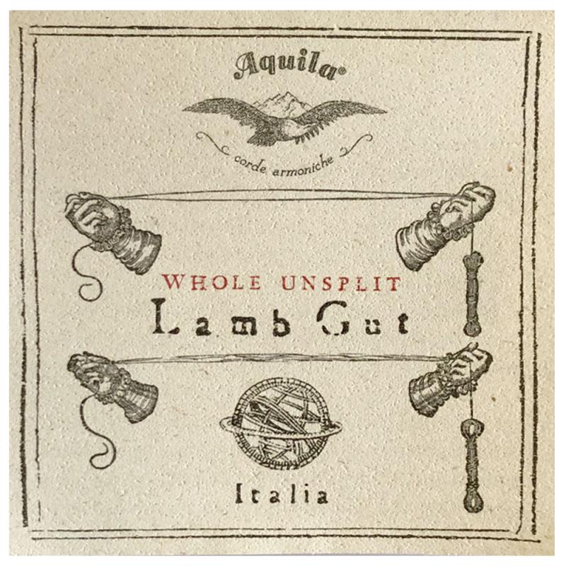Baroque Double Bass String Aquila