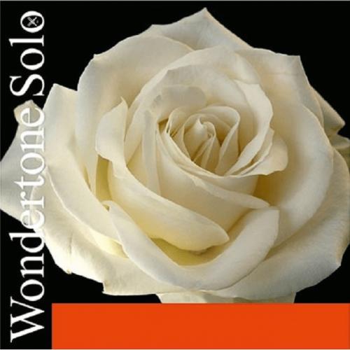 Cuerda Violín Pirastro Wondertone Solo