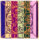 Corda Cello Pirastro Passione